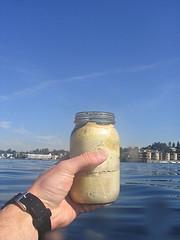 Mayo_jar
